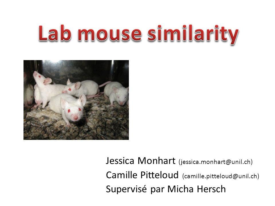 Jessica Monhart (jessica.monhart@unil.ch) Camille Pitteloud (camille.pitteloud@unil.ch) Supervisé par Micha Hersch