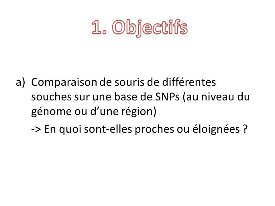 a)Comparaison de souris de différentes souches sur une base de SNPs (au niveau du génome ou dune région) -> En quoi sont-elles proches ou éloignées