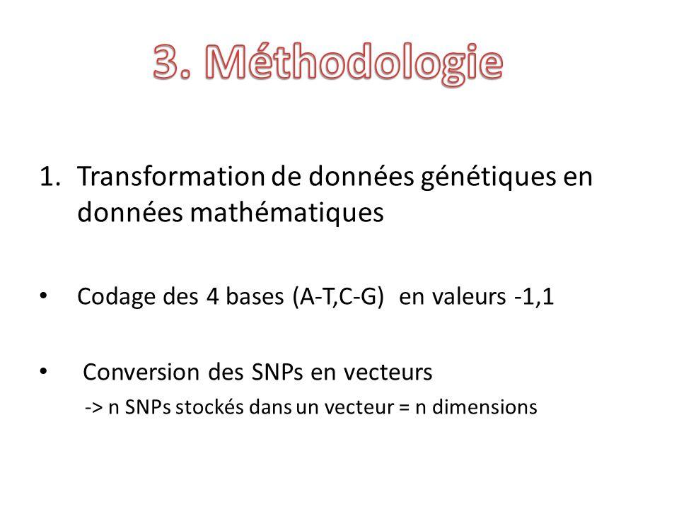 1.Transformation de données génétiques en données mathématiques Codage des 4 bases (A-T,C-G) en valeurs -1,1 Conversion des SNPs en vecteurs -> n SNPs stockés dans un vecteur = n dimensions