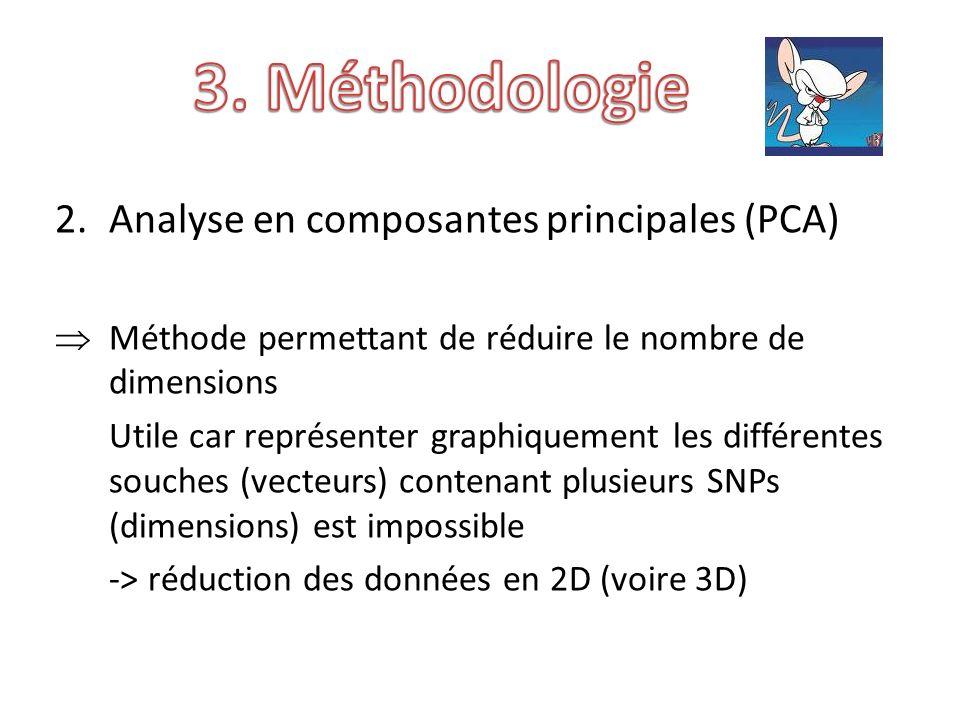 2.Analyse en composantes principales (PCA) Méthode permettant de réduire le nombre de dimensions Utile car représenter graphiquement les différentes souches (vecteurs) contenant plusieurs SNPs (dimensions) est impossible -> réduction des données en 2D (voire 3D)
