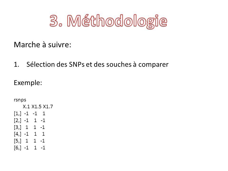Marche à suivre: 1.Sélection des SNPs et des souches à comparer Exemple: rsnps X.1 X1.5 X1.7 [1,] -1 -1 1 [2,] -1 1 -1 [3,] 1 1 -1 [4,] -1 1 1 [5,] 1 1 -1 [6,] -1 1 -1