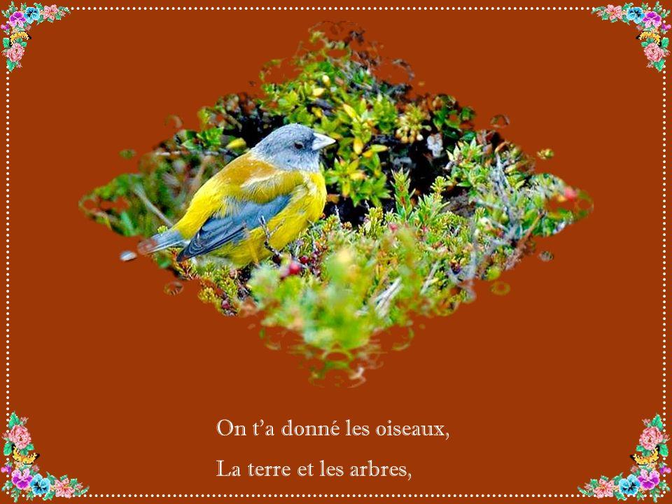 On ta donné les oiseaux, La terre et les arbres,