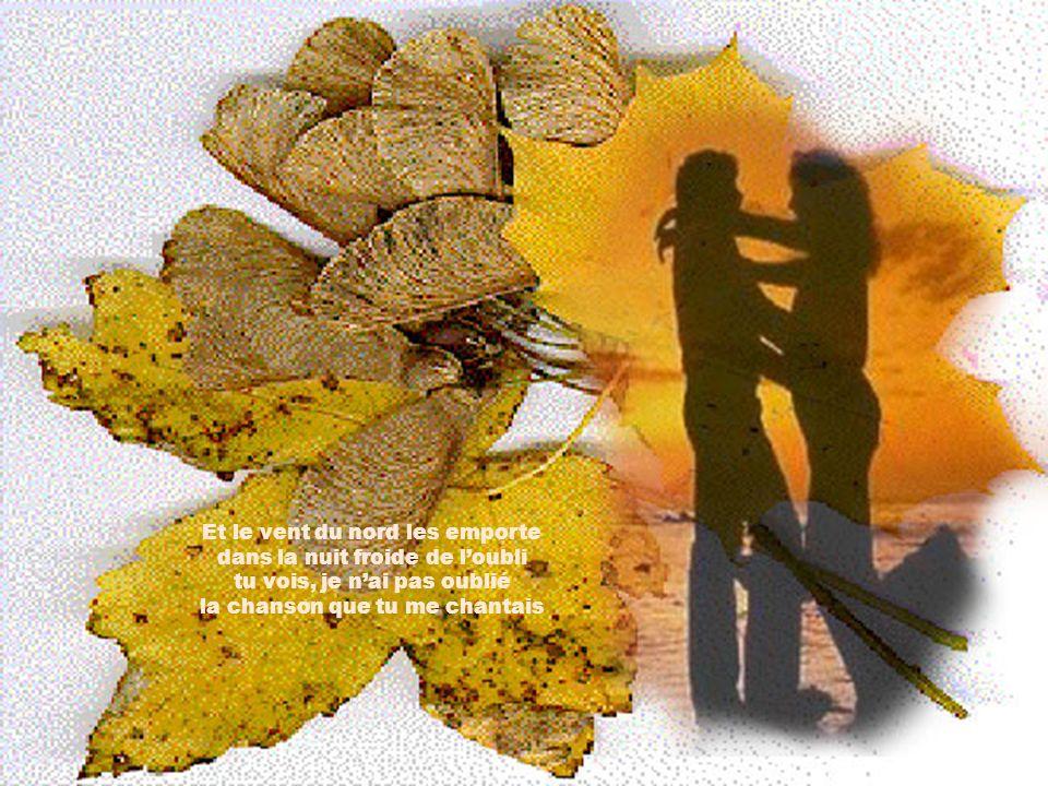 Les feuilles mortes se ramassent a la pelle. Tu vois, je nai pass oublié… Les feuilles mortes se ramassent a la pelle Les souvenirs et les regrets aus