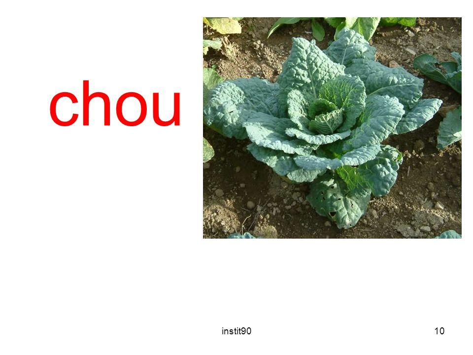 instit9010 chou