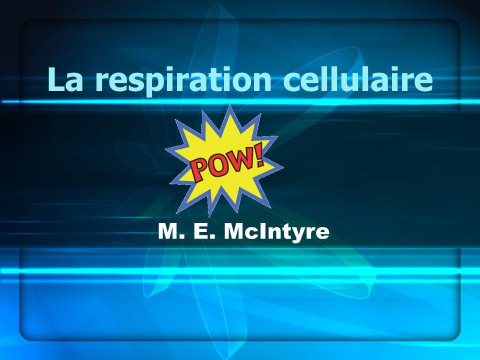 La respiration cellulaire M. E. McIntyre