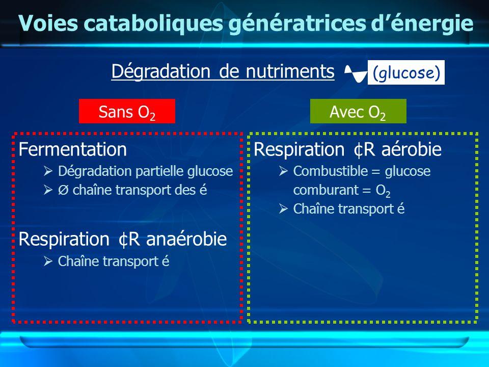 Voies cataboliques génératrices dénergie Fermentation Dégradation partielle glucose Ø chaîne transport des é Respiration ¢R anaérobie Chaîne transport