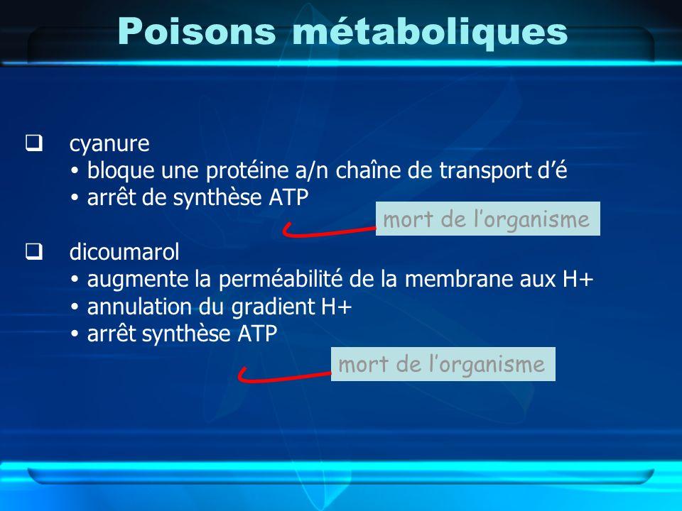 Poisons métaboliques cyanure bloque une protéine a/n chaîne de transport dé arrêt de synthèse ATP dicoumarol augmente la perméabilité de la membrane a