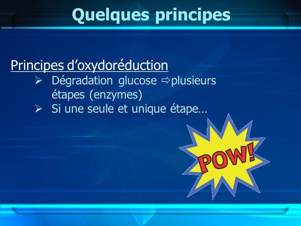 Quelques principes Principes doxydoréduction Dégradation glucose plusieurs étapes (enzymes) Si une seule et unique étape…