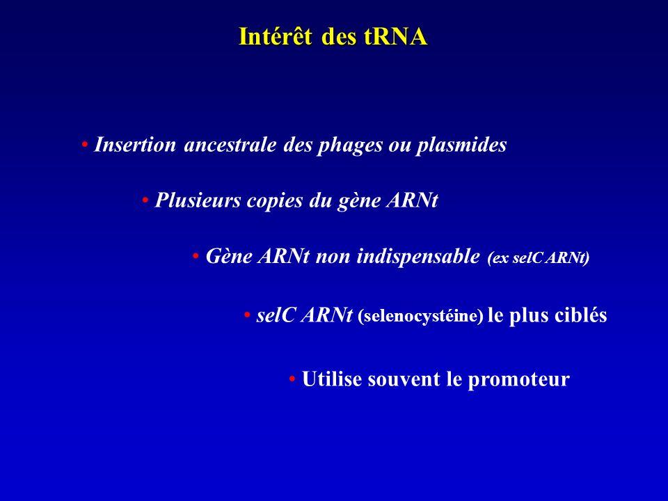 Intérêt des tRNA Plusieurs copies du gène ARNt selC ARNt (selenocystéine) le plus ciblés Utilise souvent le promoteur Gène ARNt non indispensable (ex selC ARNt) Insertion ancestrale des phages ou plasmides