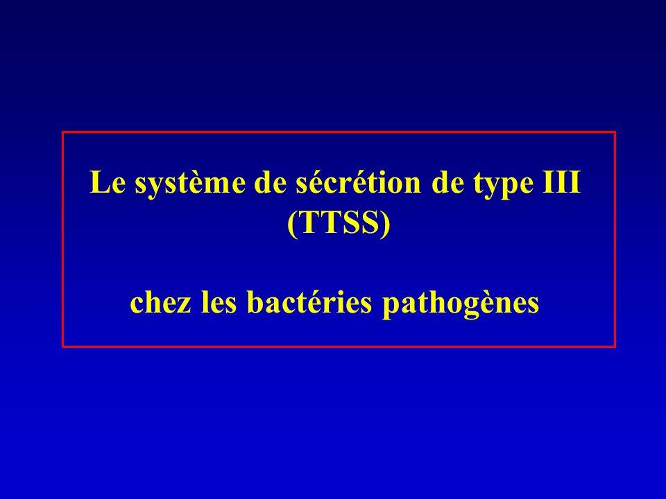Le système de sécrétion de type III (TTSS) chez les bactéries pathogènes