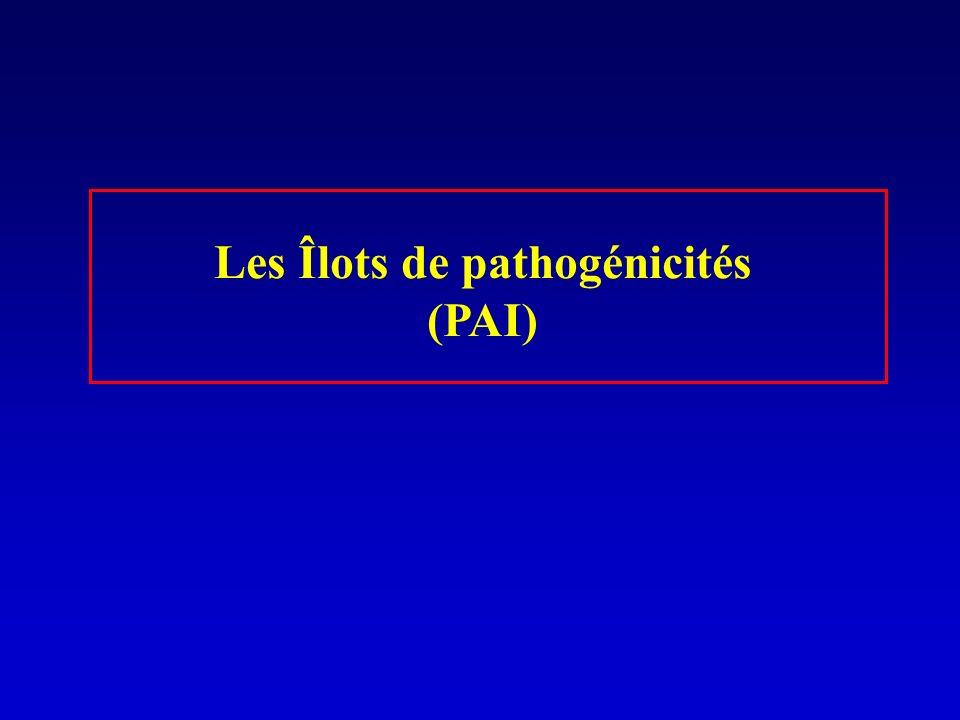 Les Îlots de pathogénicités (PAI)