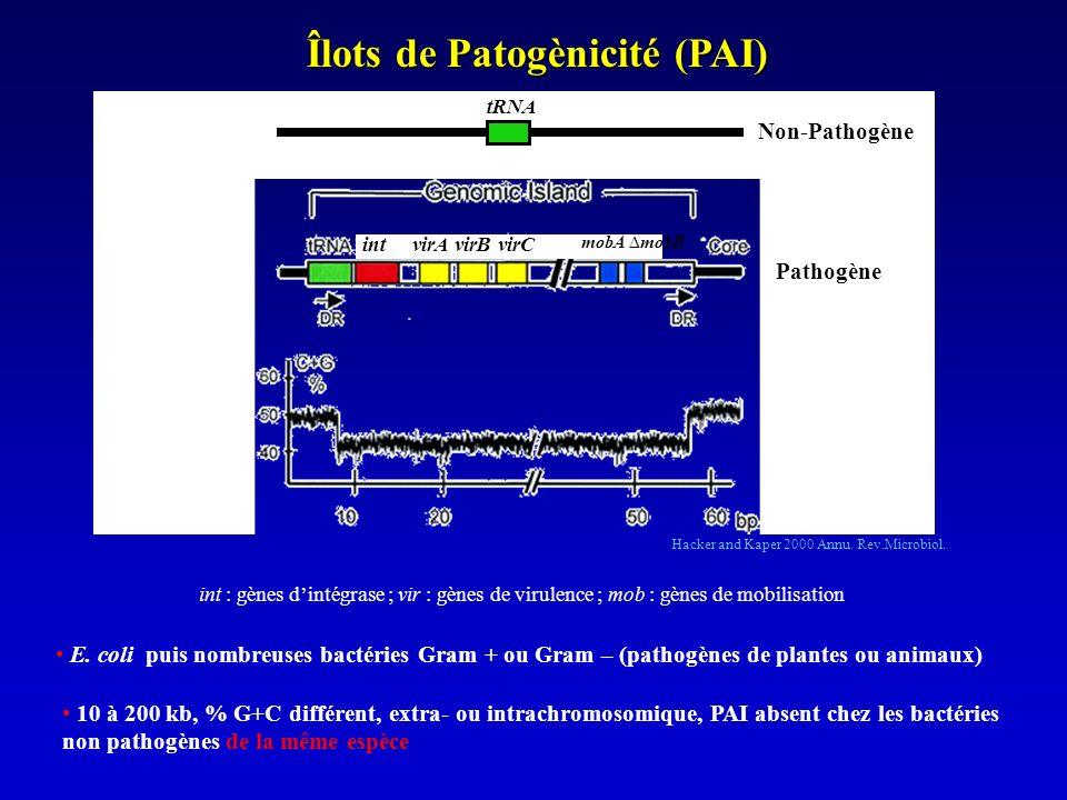 Fonctions associés aux PAI Hacker and Carniel 2001 EMBO rep.