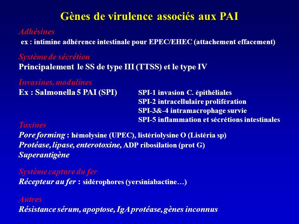 Régulation des PAI Gènes de régulation codés par le PIA ou extérieur : Activateur de transcription type AraC (TTSS ExsA ; VirF 37°C Yersinia) Régulateur de réponse à deux composants (PhoP/PhoQ, Mg 2+, SPI-1) Facteur sigma Histones +