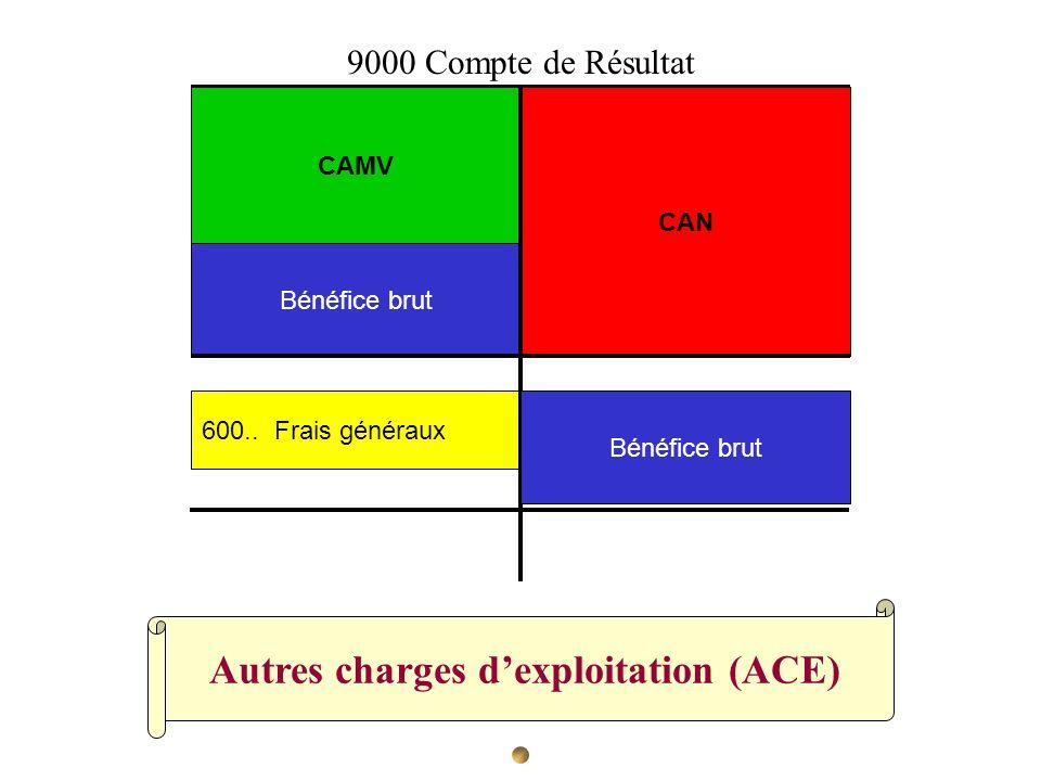 Autres charges dexploitation (ACE) CAN CAMV Bénéfice brut 600.. Frais généraux 9000 Compte de Résultat Bénéfice brut