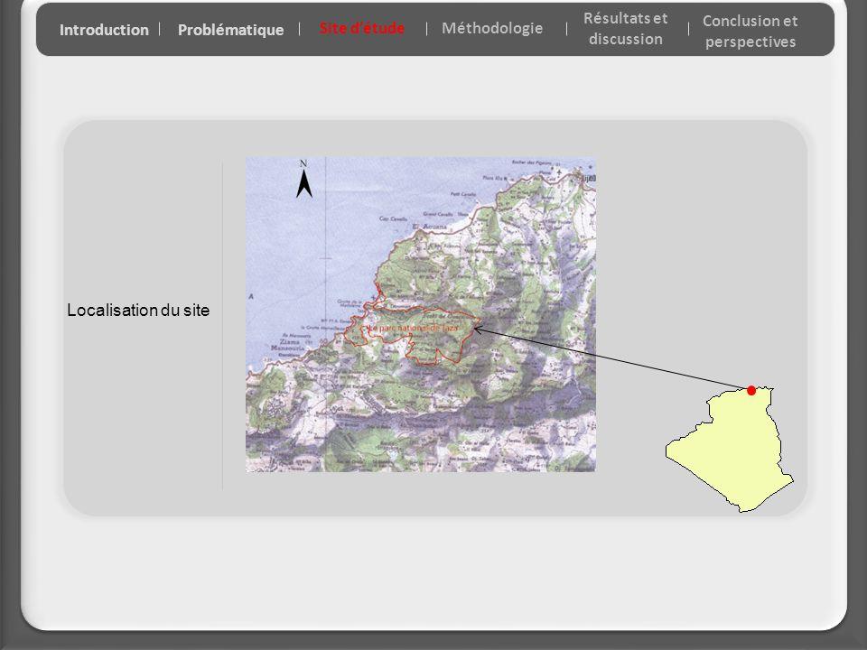 Localisation du site IntroductionProblématique Site détude Résultats et discussion Conclusion et perspectives Méthodologie