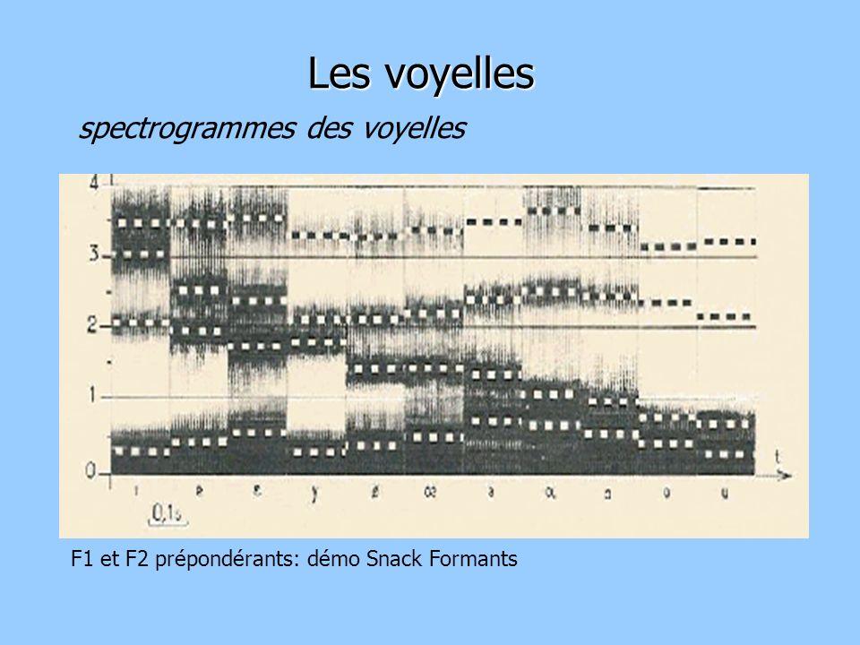 spectrogrammes des voyelles Les voyelles F1 et F2 prépondérants: démo Snack Formants