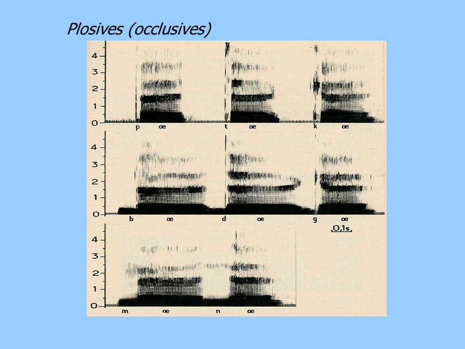 Plosives (occlusives)