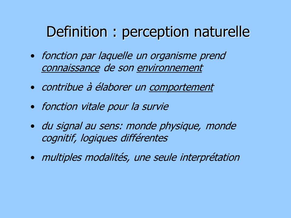 hn bn entités longues et décorrélées entités courtes et mélangées La perception comme changement de représentation