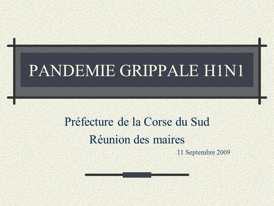 PANDEMIE GRIPPALE H1N1 Préfecture de la Corse du Sud Réunion des maires 11 Septembre 2009