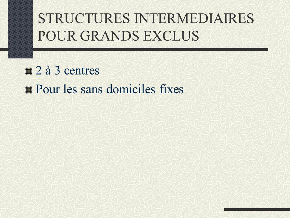 STRUCTURES INTERMEDIAIRES POUR GRANDS EXCLUS 2 à 3 centres Pour les sans domiciles fixes