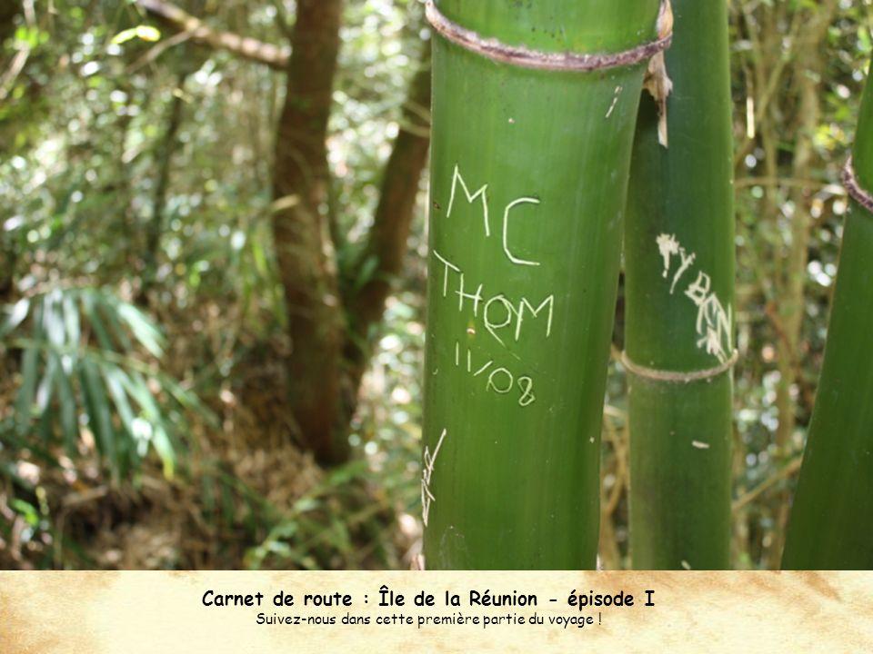 Carnet de route : Île de la Réunion - épisode I Suivez-nous dans cette première partie du voyage !