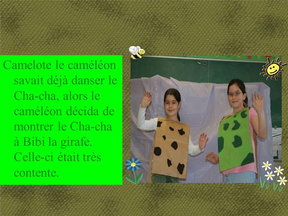 Camelote le caméléon savait déjà danser le Cha-cha, alors le caméléon décida de montrer le Cha-cha à Bibi la girafe.
