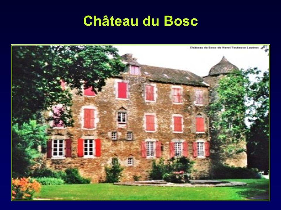 Il passe ses jeunes années entre Albi et les châteaux du Bosc et Céleyran appartenant à ses grands parents