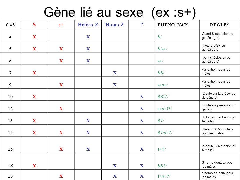 Gène lié au sexe (ex :s+) CAS Ss+Hétéro ZHomo Z? PHENO_NAISREGLES 4X X S/ Grand S (éclosion ou généalogie) 5XXX S/s+/ Hétéro S/s+ sur généalogie 6 XX