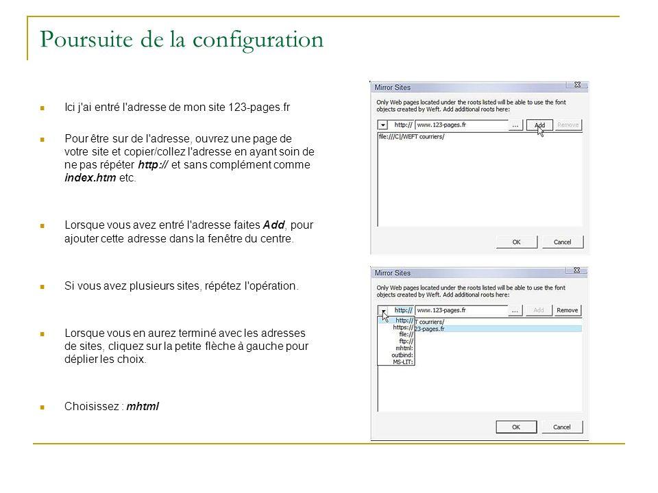 Poursuite de la configuration Ici j'ai entré l'adresse de mon site 123-pages.fr Pour être sur de l'adresse, ouvrez une page de votre site et copier/co