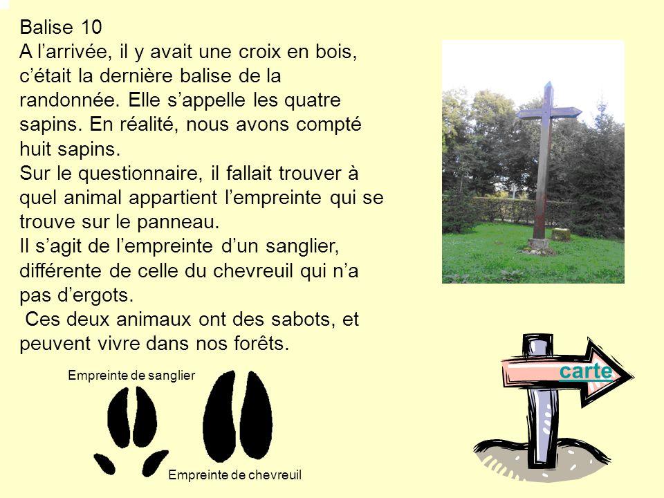 Balise 10 A larrivée, il y avait une croix en bois, cétait la dernière balise de la randonnée. Elle sappelle les quatre sapins. En réalité, nous avons