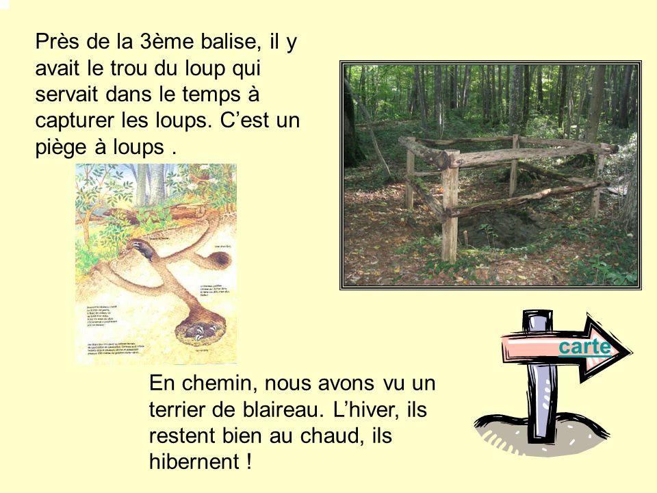 Balise 4 : La piste denvol du parapente Il ressemble à un escalier avec des marches pour descendre.