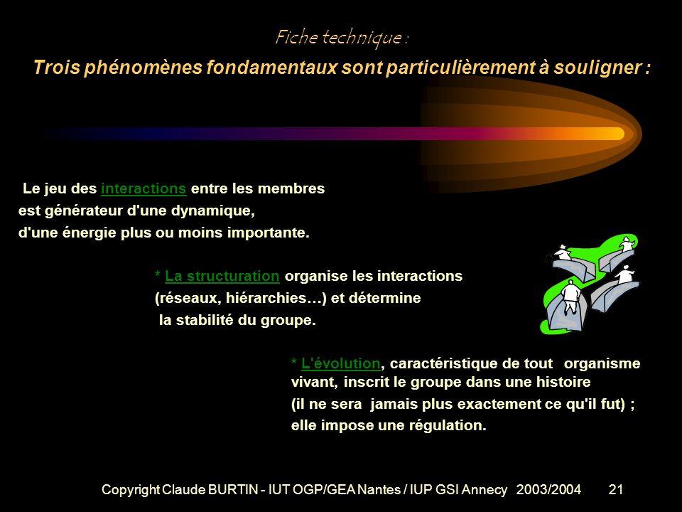 Copyright Claude BURTIN - IUT OGP/GEA Nantes / IUP GSI Annecy 2003/200420 LES GROUPES DE TRAVAIL Dans un groupe centré sur une tâche, l'activité et le