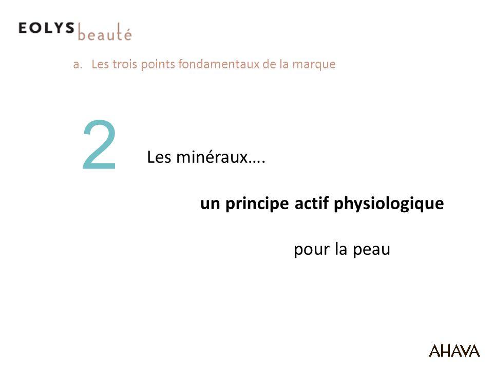 a.Les trois points fondamentaux de la marque 2 Les minéraux….