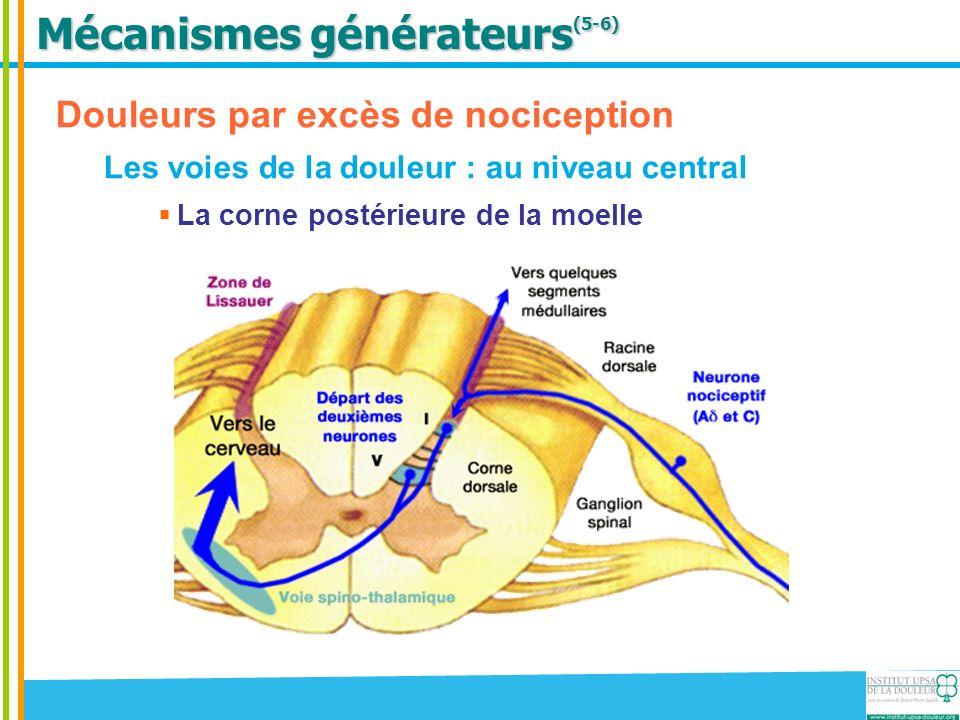 Mécanismes générateurs (5-6) Douleurs par excès de nociception Les voies de la douleur : au niveau central Lintégration supra-spinale Substance réticulée, thalamus, système limbique, cortex, … discrimination, dimension affective cognitive et comportementale de la douleur