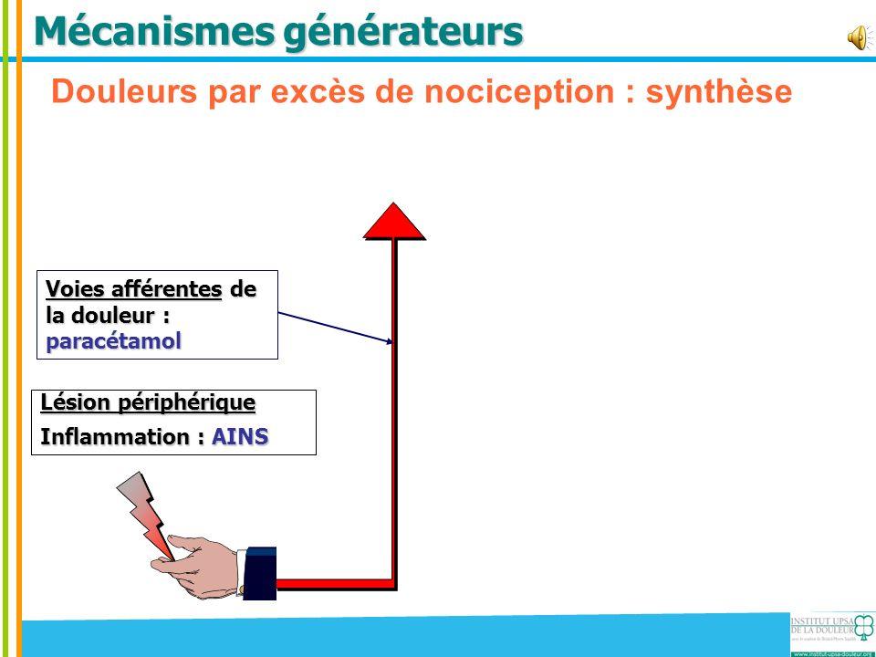 Mécanismes générateurs Douleurs par excès de nociception : synthèse Lésion périphérique Inflammation : AINS Voies afférentes de la douleur : paracétam