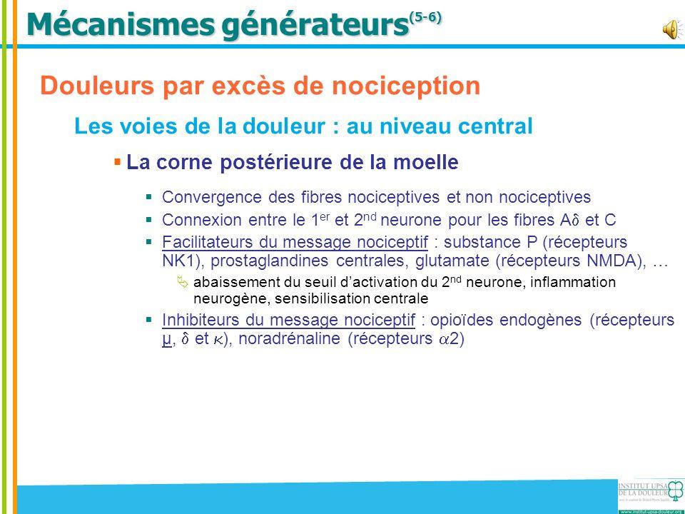 Mécanismes générateurs (5-6) Douleurs par excès de nociception Les voies de la douleur : au niveau central La corne postérieure de la moelle Convergen