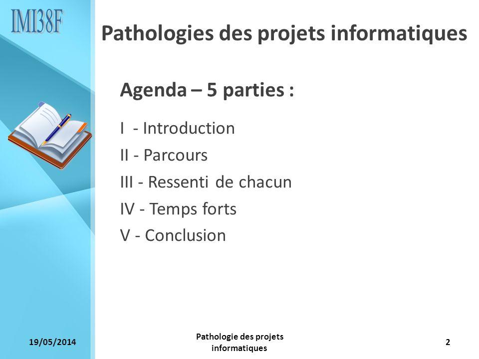 19/05/2014 Pathologie des projets informatiques 2 Agenda – 5 parties : I - Introduction II - Parcours III - Ressenti de chacun IV - Temps forts V - Co
