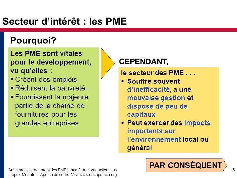 Améliorer le rendement des PME grâce à une production plus propre: Module 1: Apercu du cours. Visit www.encapafrica.org. 5 Secteur dintérêt : les PME