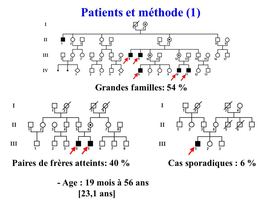 Cas sporadiques : 6 % Patients et méthode (1) Grandes familles: 54 % Paires de frères atteints: 40 % - Age : 19 mois à 56 ans [23,1 ans]