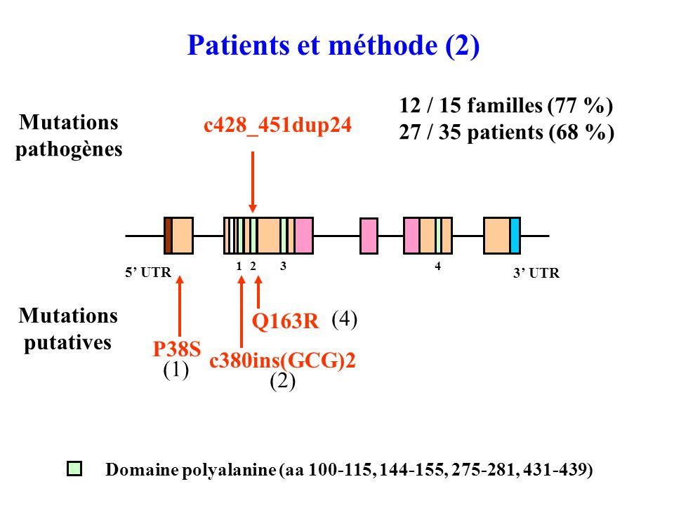 c428_451dup24 Patients et méthode (2) 2 3 UTR 5 UTR 13 4 Domaine polyalanine (aa 100-115, 144-155, 275-281, 431-439) Q163R P38S (1) (4) 12 / 15 familles (77 %) 27 / 35 patients (68 %) Mutations pathogènes c380ins(GCG)2 (2) Mutations putatives
