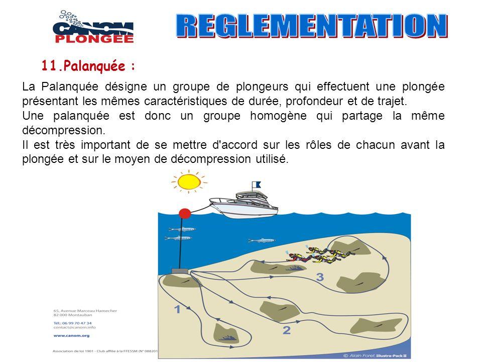 La Palanquée désigne un groupe de plongeurs qui effectuent une plongée présentant les mêmes caractéristiques de durée, profondeur et de trajet. Une pa