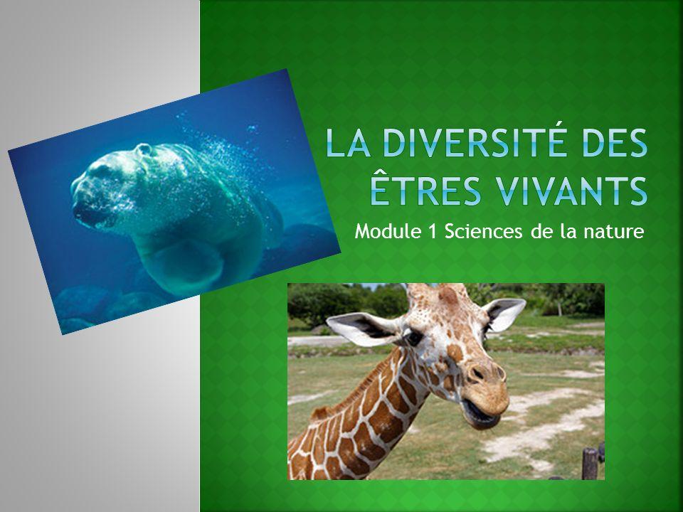 Module 1 Sciences de la nature