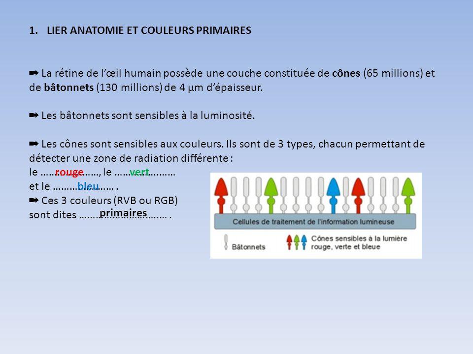 1.LIER ANATOMIE ET COULEURS PRIMAIRES La rétine de lœil humain possède une couche constituée de cônes (65 millions) et de bâtonnets (130 millions) de