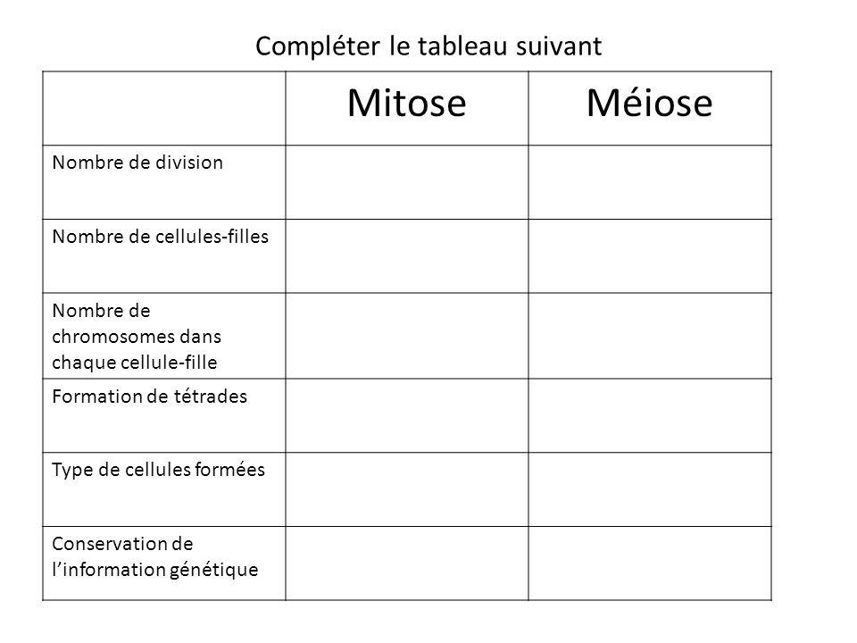 Compléter le tableau suivant MitoseMéiose Nombre de division Nombre de cellules-filles Nombre de chromosomes dans chaque cellule-fille Formation de tétrades Type de cellules formées Conservation de linformation génétique