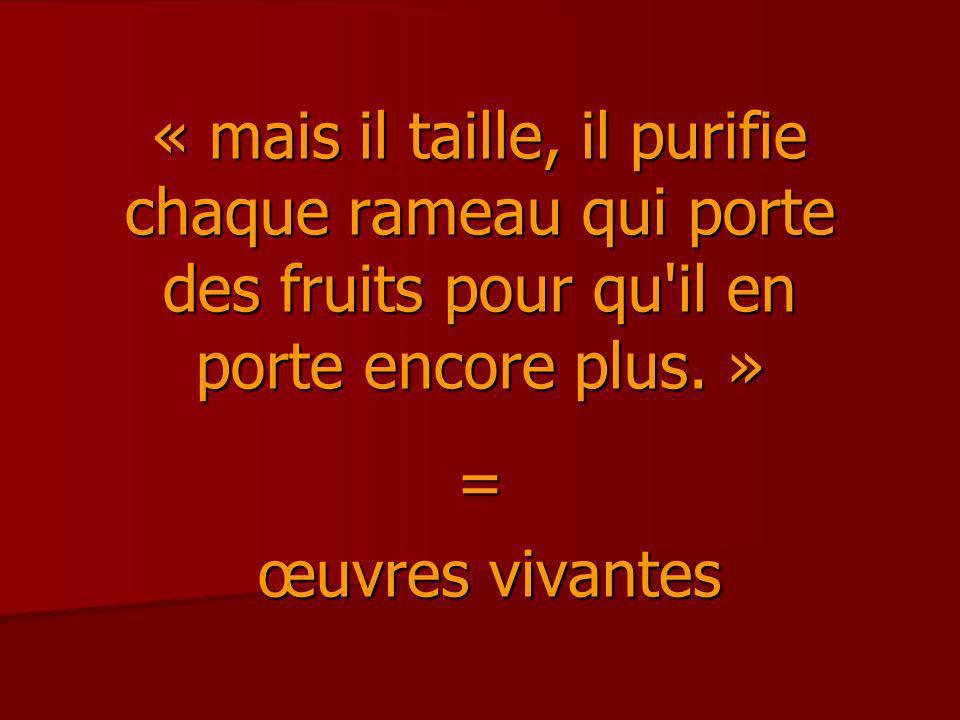 « mais il taille, il purifie chaque rameau qui porte des fruits pour qu'il en porte encore plus. » = œuvres vivantes œuvres vivantes
