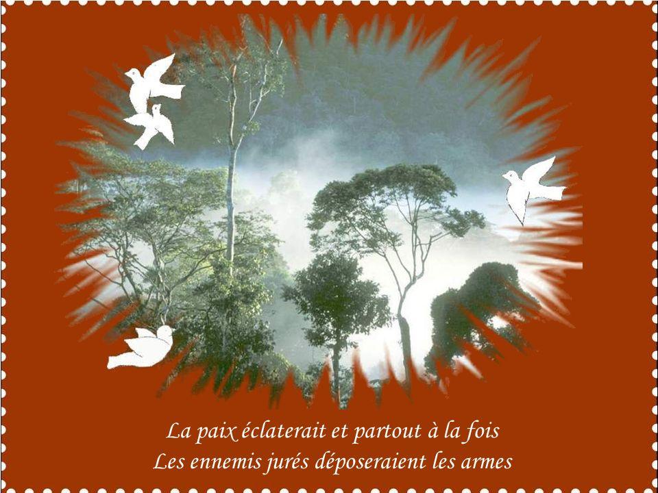 Oui, si jétais colombe jœuvrerai dans les âmes Pour porter à chacun sérénité et joie ;