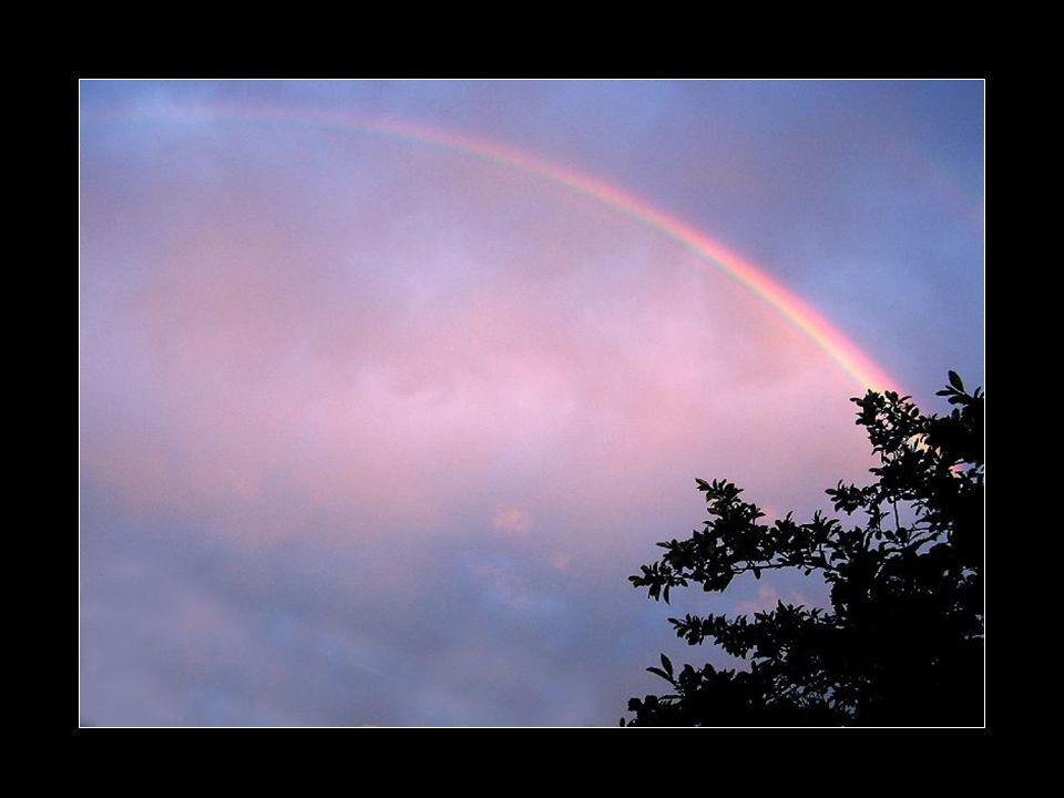 Chaque larme est transformée en prisme Illuminant notre chemin, notre cœur Passant de l éclosion au silence Apportant la paix et la sérénité… Arc-en-ciel éblouissant