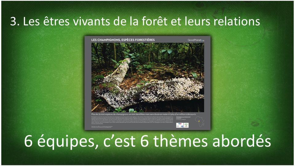 6 équipes, cest 6 thèmes abordés 3. Les êtres vivants de la forêt et leurs relations