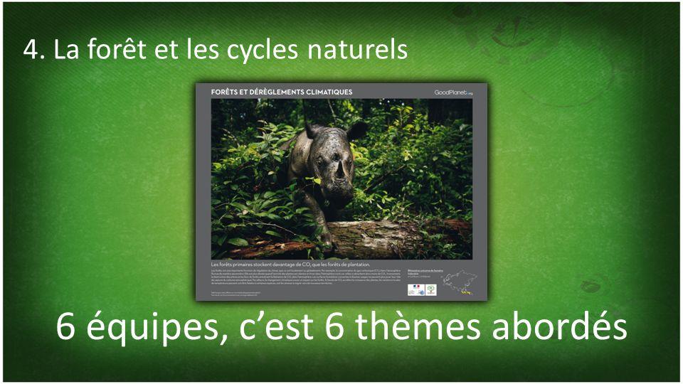 6 équipes, cest 6 thèmes abordés 4. La forêt et les cycles naturels