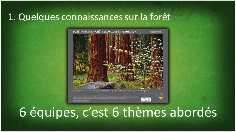 6 équipes, cest 6 thèmes abordés 1. Quelques connaissances sur la forêt